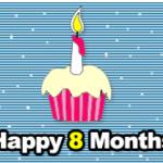 MRHUA博客8个月纪念